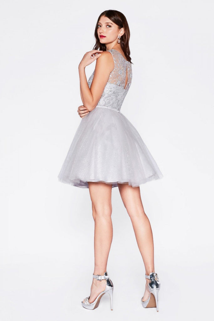 A-Line Tulle Short Cocktail Dress CDCD20