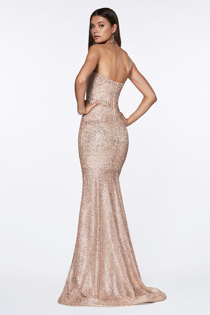 Strapless Sleeveless Elegance Long Prom Dress CDCJ516