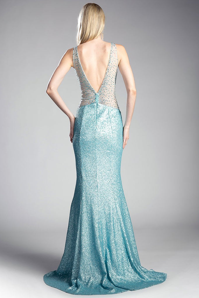 Elegant Evening Gowns 2019 CDCR806-Long Dresses-alwaysprom.com