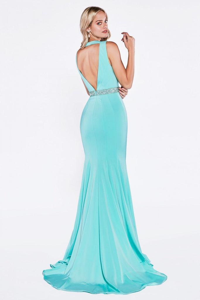 Fitted Mermaid Long Prom Dress CDP107