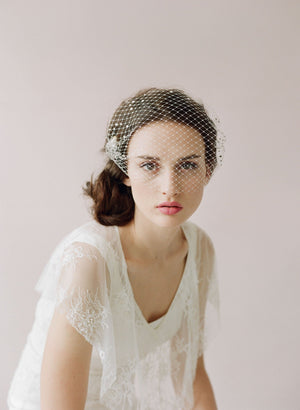 J. Crew Twigs & Honey rhinestone birdcage veil