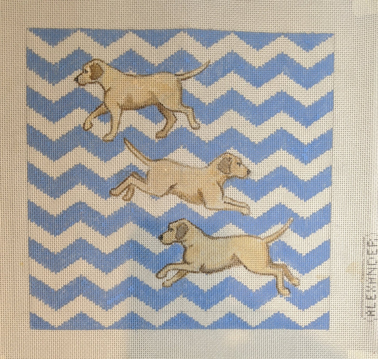 Three Yellow Labs with Zig Zag Background