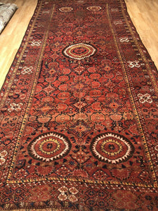 "Amazing Afghan Rug - 1880s Antique Turkmen Rug - Tribal Gallery 6'3"" x 14'1"""