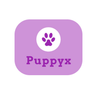 PuppyxShop dog products