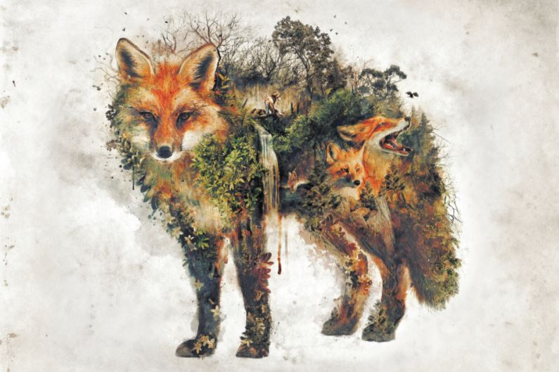 EXCLUSIVE BARRETT BARRETT BIGGERS Surreal Fox - The Diamond Painting Factory