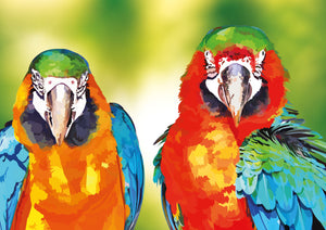 EXCLUSIVE Elvira Clement - Two of a Kind Parrots - The Diamond Painting Factory