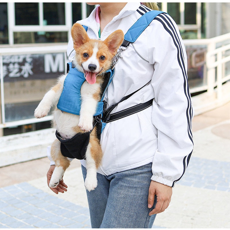 Multifunctional Backpack Dog Leash !