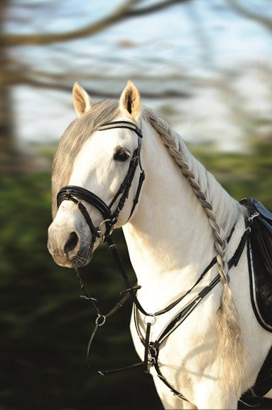 HKM Patent Diamante Bridle