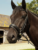 Heritage English Leather Comfort Bridle With Flash Noseband