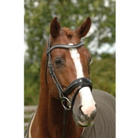 GFS PDS Patent Rolled Dressage Bridle-with reins.