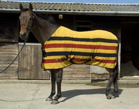Harlequin Newmarket Stripe Fleece