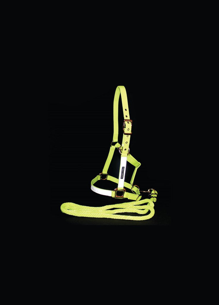 Harry Hall Hi Viz Headcollar and Leadrope Set