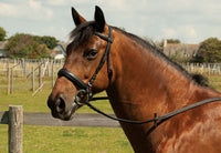 Heritage English Leather Comfort Bridle - Cavesson Noseband