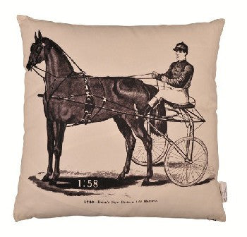 Old Fashioned Pillow with Horse Design