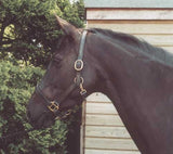 Heritage English Leather Headcollar