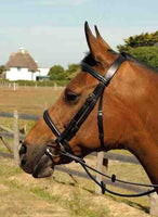 Heritage English Leather Bridle - Cavesson Noseband