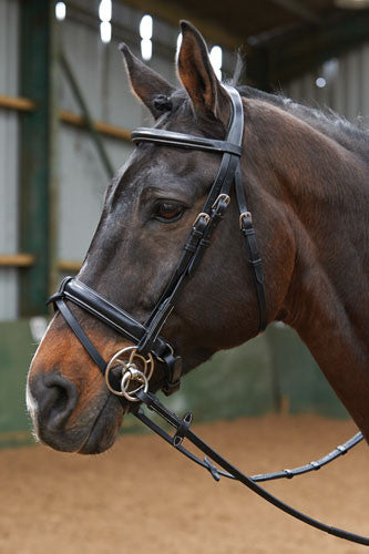 John Whitaker Crank Flash Bridle ( with loop reins)