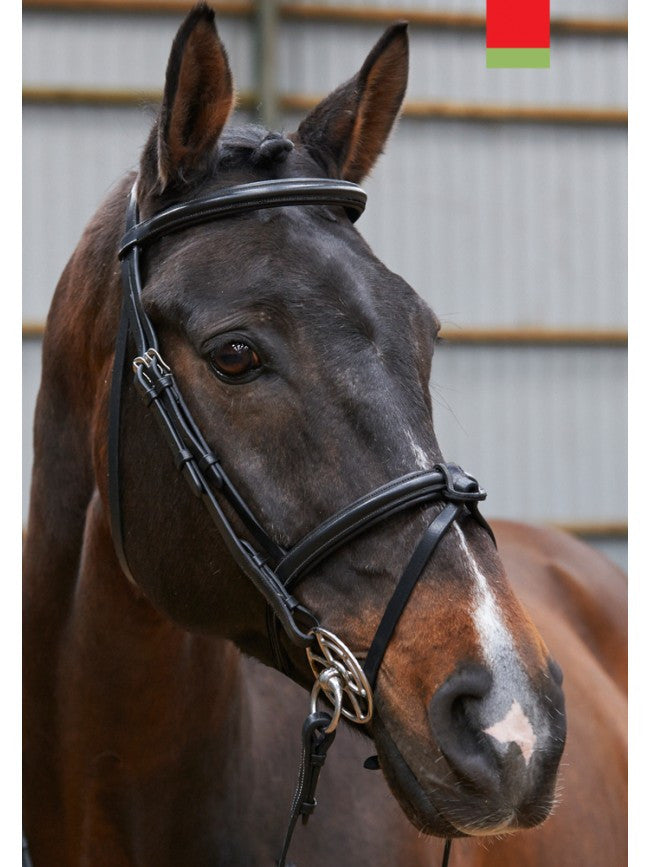 John Whitaker Raised Flash Bridle
