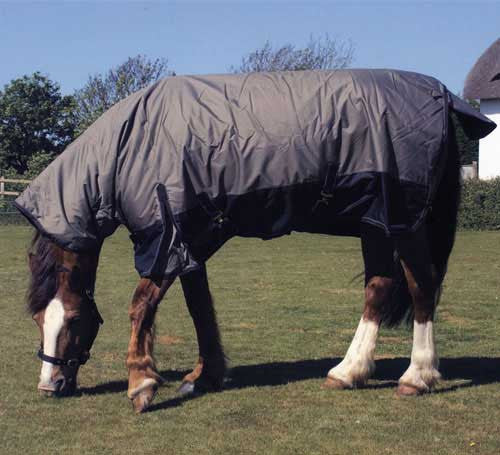 Rhinegold Nevada Turnout Rug 320gsm