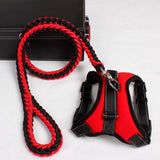Reflective Harness/Leash