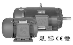 450 HP Three Phase Severe Duty Electric Motor