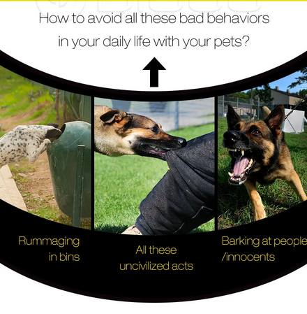 image of bad dog behaviors to try to correct with image of Digoo Dog Training Collar