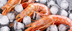 Red Shrimp 1 lb