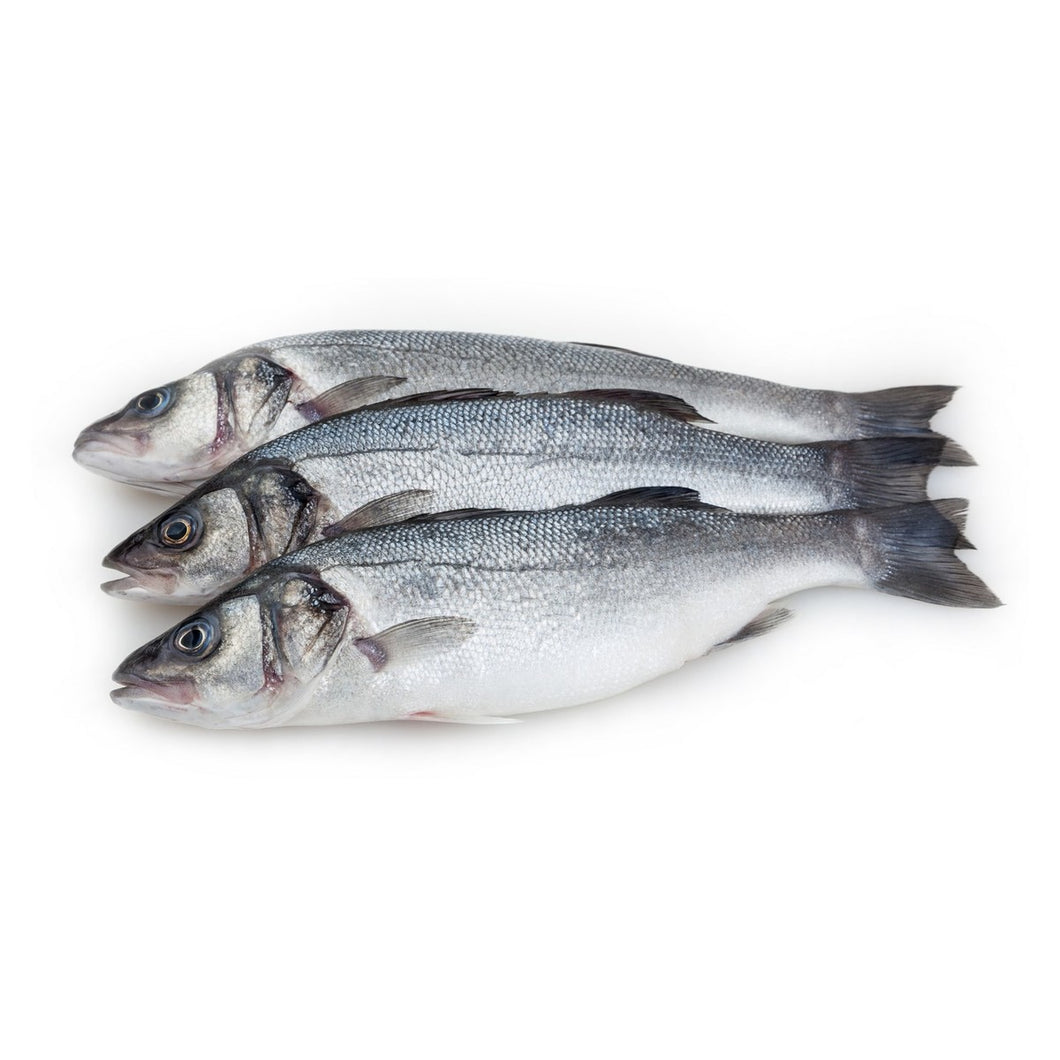 Fresh European Sea Bass 1 kg