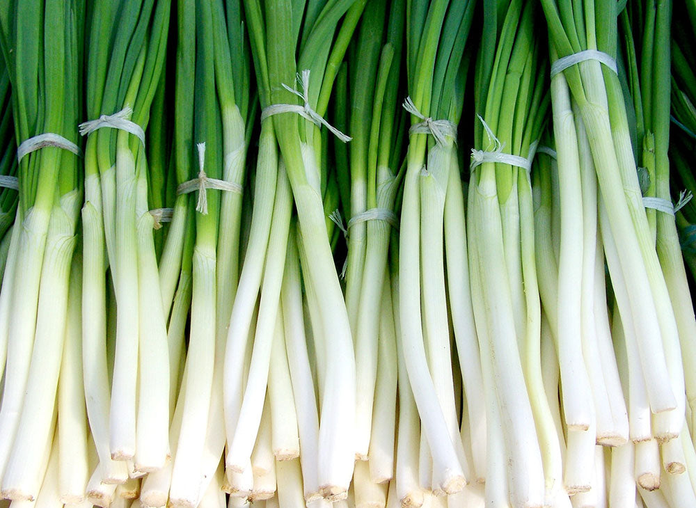 Onions, Green bunches