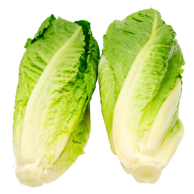Romaine Hearts Pack of 6