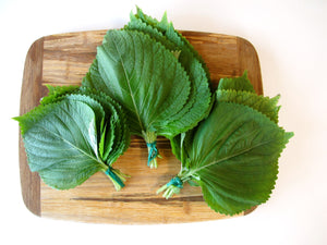 Sesame Leaves bundle