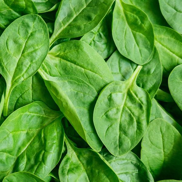 Spinach Bag per lb