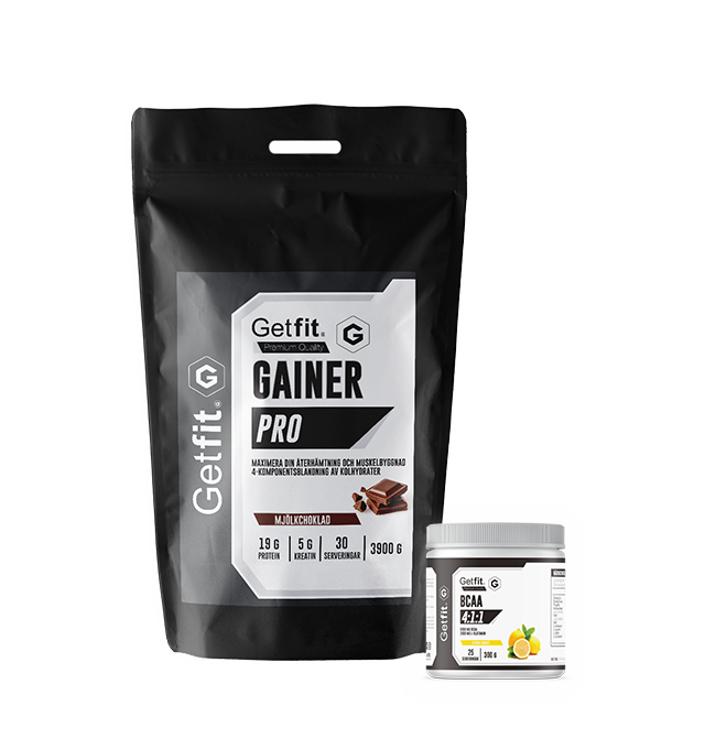 Gainer Pro + Bcaa