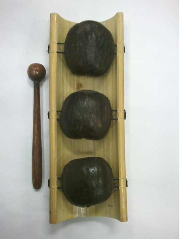 Instrument-Seed Pod Xylaphone