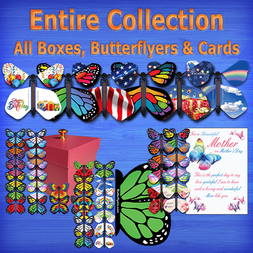All Our Butterflyers