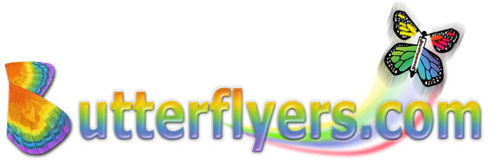 Magic Flying Butterflyers Logo