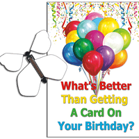 Birthday Greeting Card with Blank Birthday wind up flying butterfly from butterflyers.com