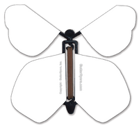 Blank Flying Butterfly