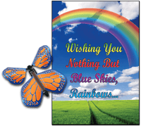 Blue Sky Rainbow greeting card with cobalt orange flying butterfly from butterflyers.com
