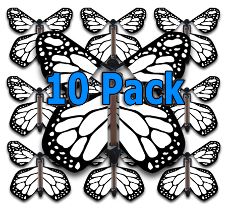 Color Me Monarch Flying Butterfly (10 Pack)