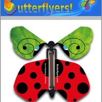 Ladybug Wind Up Flying Butterfly For Greeting Cards by Butterflyers.com
