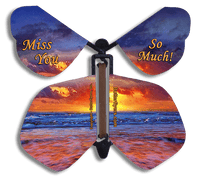 Miss You So Much Flying Butterfly from butterflyers.com