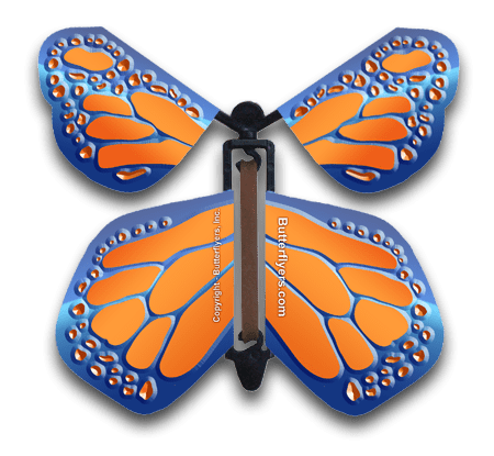 Cobalt Orange Wind Up Flying Butterfly For Greeting Cards by Butterflyers.com