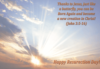 He is Risen Greeting Card Inside by Butterflyers.com