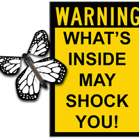 Warning Greeting Card with Color Me monarch wind up flying butterfly from butterflyers.com