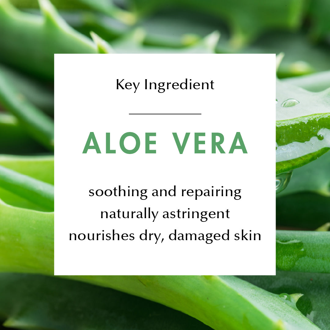 Ingredient Education- Aloe Vera: soothing and repairing, naturally astringent, nourishes dry, damaged skin.