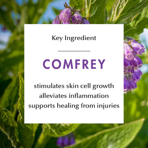 Ingredient Education- Comfrey: stimulates skin cell growth, alleviates inflammation, supports healing from injuries.