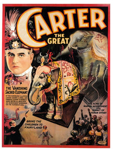 Carter and the Vanishing Elephant - Poster