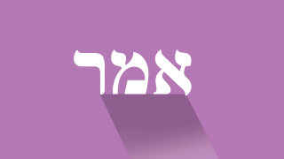 Emor: Is There A Shabbat In Other Realms?