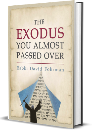 Passover Book | The Exodus You Almost Passed Over